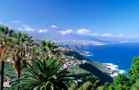 Лучшие курортные районы для отдыха на Тенерифе