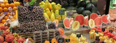 Гайд по супермаркетам в Барселоне