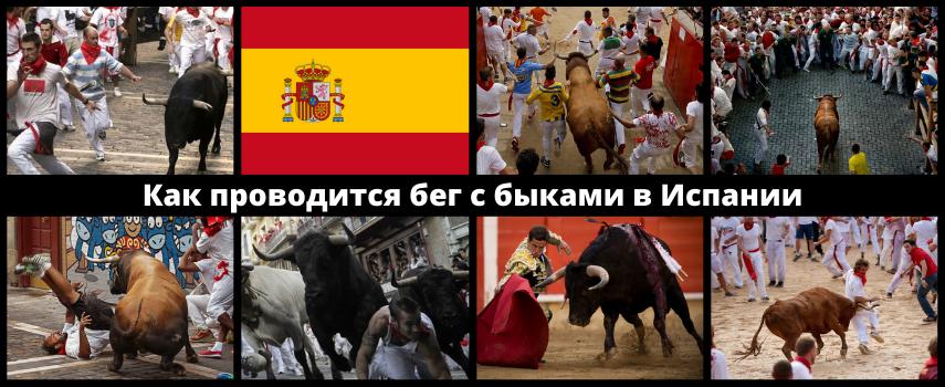 Забег быков Испании
