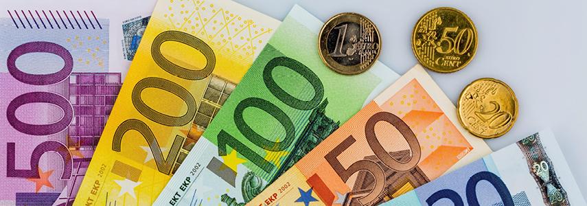 Единая валюта – евро