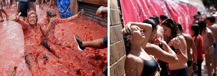 """Заключительный этап программы """"томатного побоища"""""""