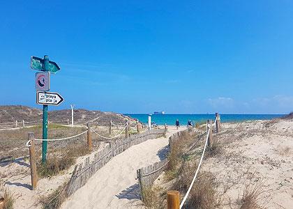 Дорожка к Playa del Saler