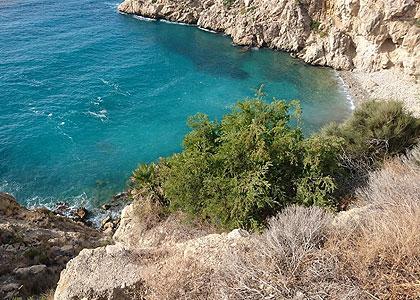 Вид на Playa de la Solsida
