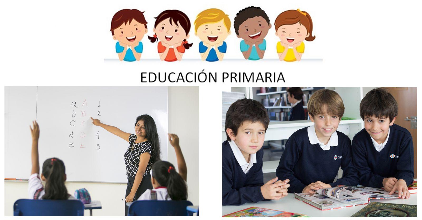 Начальное образование проводится в течение 6 лет (курсов)