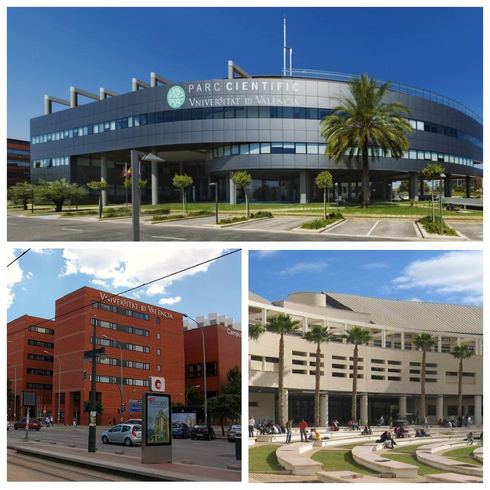 Несколько университетов
