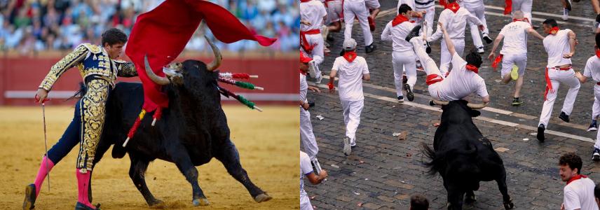 Коррида и бег от быков