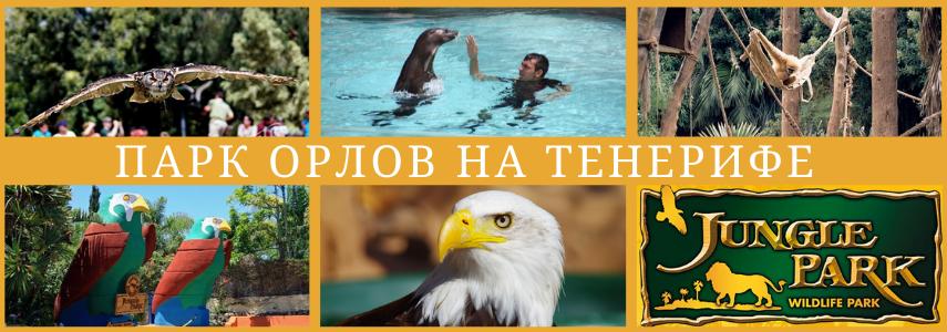 Парк орлов в Испании