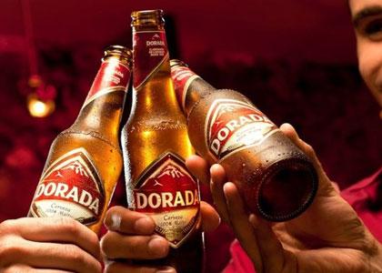 kanarskoe pivo Dorada