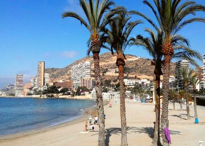 Альбуферета пальмы на пляже