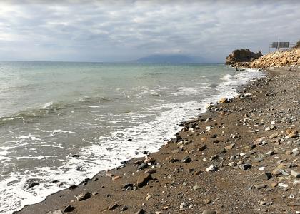 Берег пляжа для собак