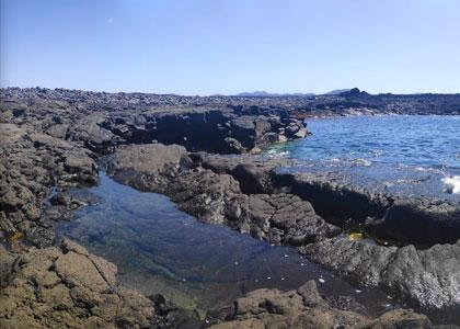 Каменистый пляж Кочино