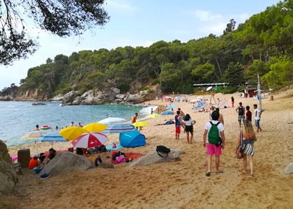 Люди на пляже Treumal