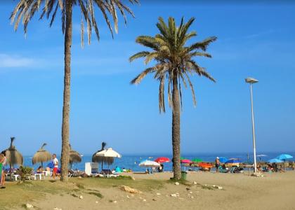 Пальмы на пляже Нагуэлес