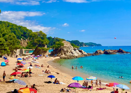 Вид на пляж Treumal