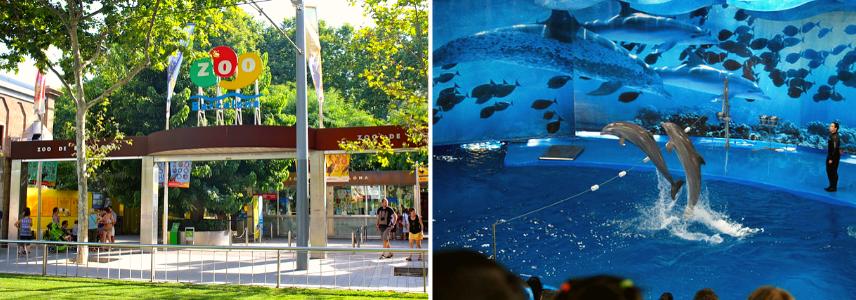 Зоопарк и дельфинарий