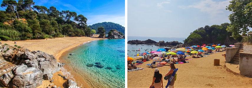 пляж Treumal