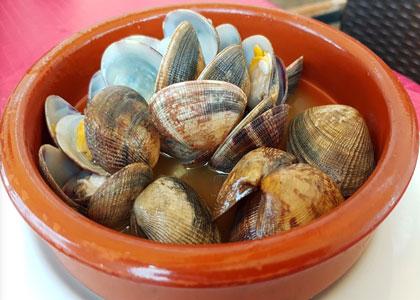 ракушки в Restaurante la Escollera