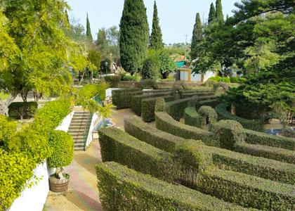 Ботанический сад Molino de Inca