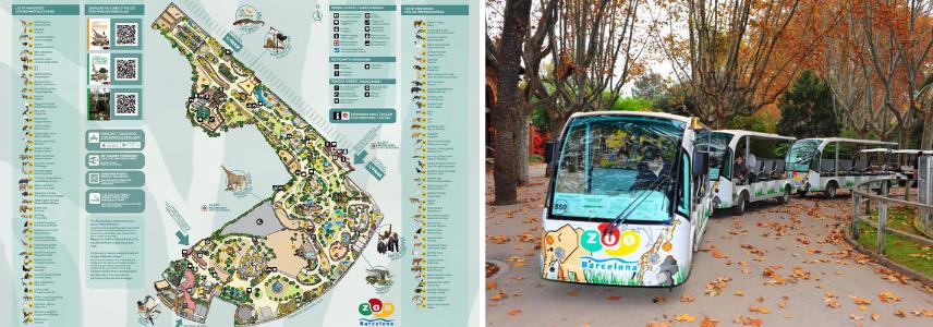 Зоопарк Барселоны экскурсии