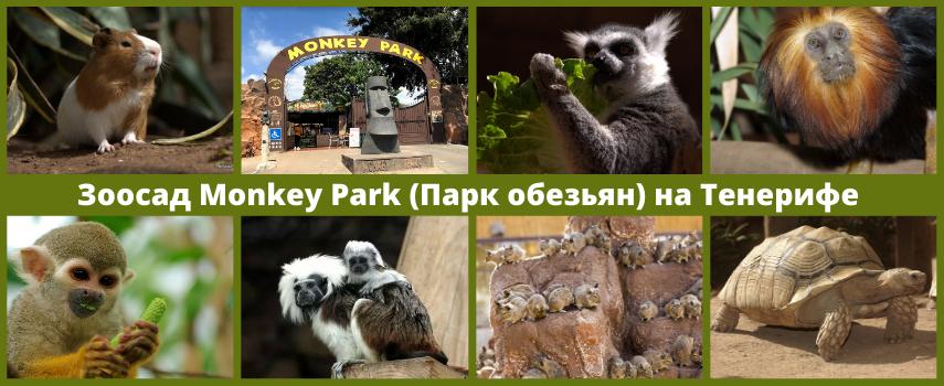 Манки Парк