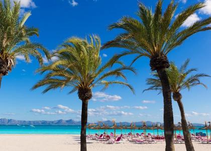 Пальмы на пляже Алькудия