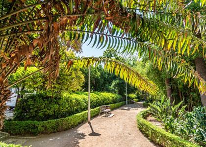 В малагском парке