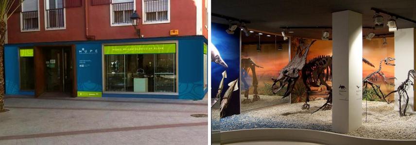 Палеонтологический музей в Эльче