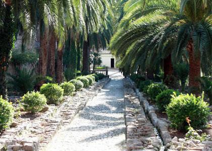 Аллея в садах Альфабия