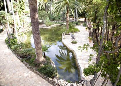 Пруд в садах Альфабия