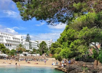 Сосны на пляже курорта Кала д'Ор