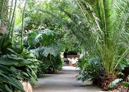Тропический парк в Порто-Кристо