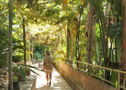 В тропическом парке в Порто-Кристо