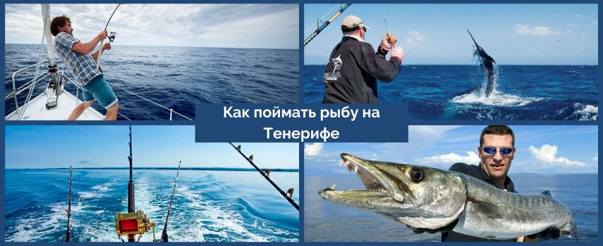 Рыбалка Тенерифе