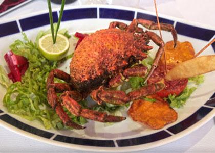 Морепродукты в ресторане El Torito