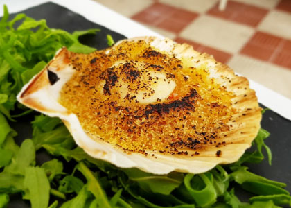 Морской гребешок в ресторане Tambo