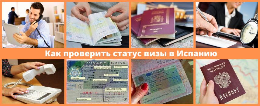 Отследить визу в Испанию