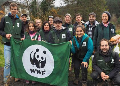 Волонтеры экологического движения
