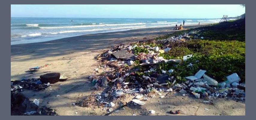 Королева Испании присоединилась к Дню уборки мусора