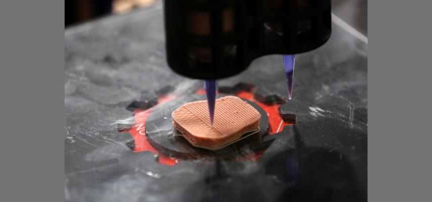 3D-печать для печати вегетарианских стейков