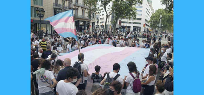 Проект закона о признании гендерной самоидентификации