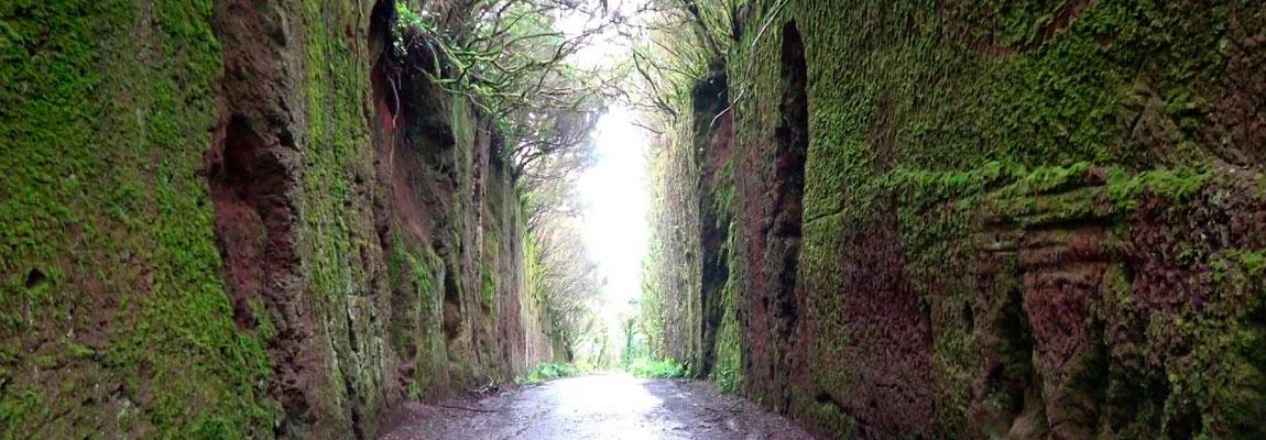 Дорога к Pico del Inglés