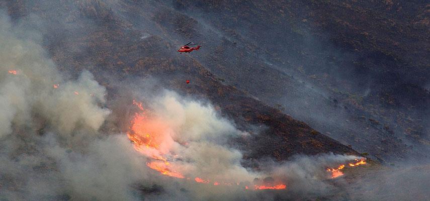 Сильный дождь помогает взять под контроль лесной пожар в провинции Малага