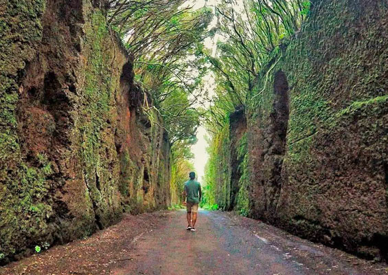 На старой дороге к Pico del Inglés
